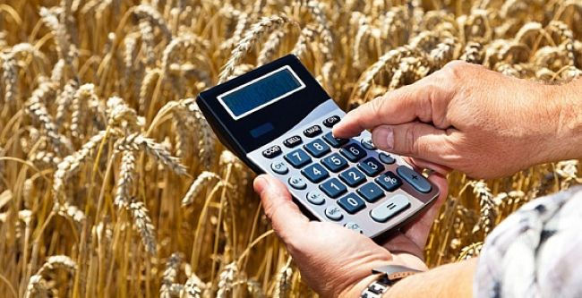 гранты фермерам