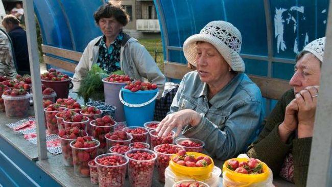 торговля в садоводствах